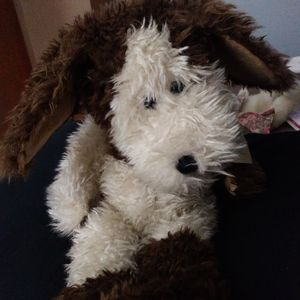 Preston. Retired Boyds Bears. Has tag and collar